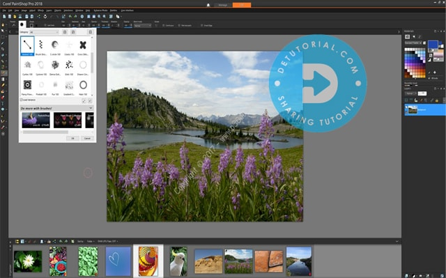 Persyaratan Sistem Untuk Corel Paintshop Pro 2018 Ultimate